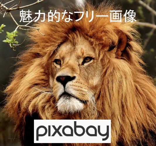 魅力的なフリー画像 pixabay